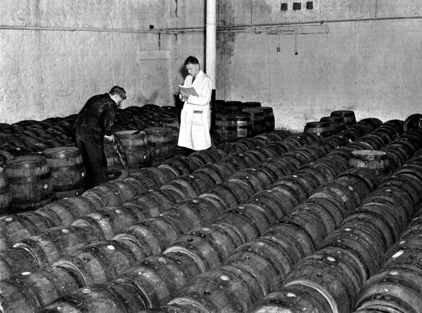 Staff members checking the barrels in 1953.