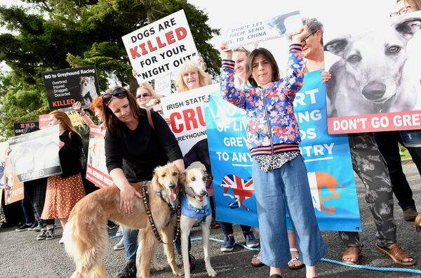 Members of Dog Action Welfare Group (DAWG) outside the Greyhound Stadium in Curraheen. Pic; Larry Cummins