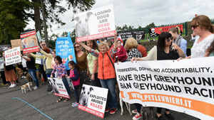 Further protests planned against Ireland's greyhound industry