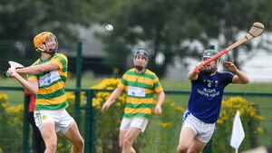 Blackrock hurling is on a high after capturing two league titles