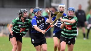 Plenty of excitement in opening rounds of the Cork camogie championship with room for improvement
