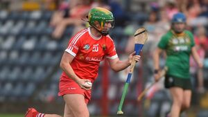 Clinical Cork camogie outfit had far too much class for newcomers Meath