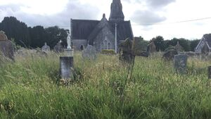 City Hall urged to tackle overgrown Douglas cemetery