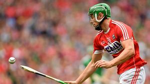 The culture in the Cork camp is if you perform at training you will play