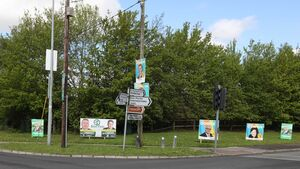 Cork Litter Wardens are targeting election posters still up on poles