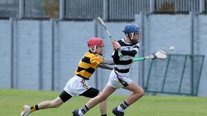 Na Piarsaigh came up short but can be proud of reaching Division 1 Féile final