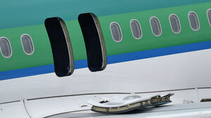 Report on Cork flight hears of chaotic scenes that led to passengers opening emergency exits and slides