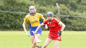 Changes likely in Cork camogie line-up but champions expected to win well