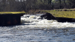 Warning over 'terrifying' condition of Ballincollig's weir