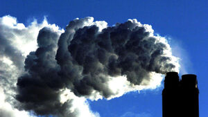 UCC expert calls for an immediate ban on burning coal to protect our air
