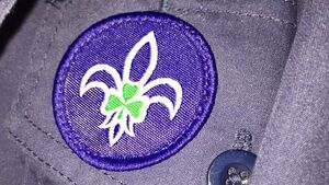 Scouting Ireland is increasing membership fees to provide a compensation fund for victims of child abuse