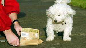 Unleash a wave of measures to tackle dog dirt