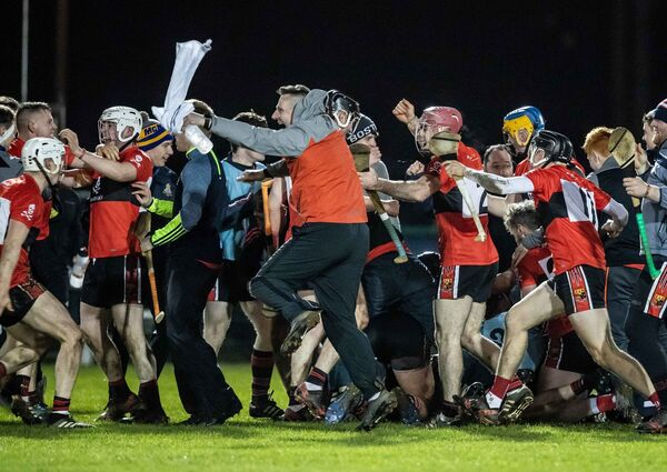 UCC celebrates the final whistle. Pic: INPHO/Morgan Treacy