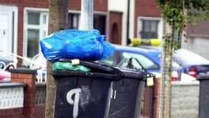 New bin laws come into effect in Cork on Monday