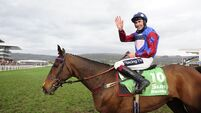 Cork jockey gets first Cheltenham win in 10 years