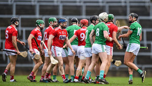 The John Horgan column: It was vital the Rebels didn't lose another game to Limerick