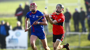 After coming through the group of death UCC's name was on the Fitzgibbon Cup