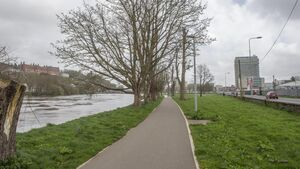 Councillor: Cyclists endangering walkers on Lee Fields walkway