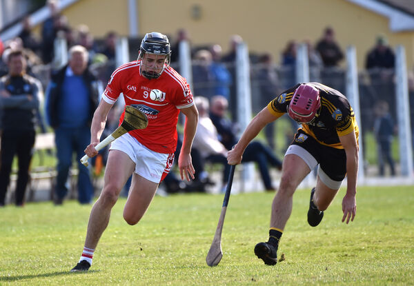 Darragh Fitzgibbon in club action. Picture: Dan Linehan