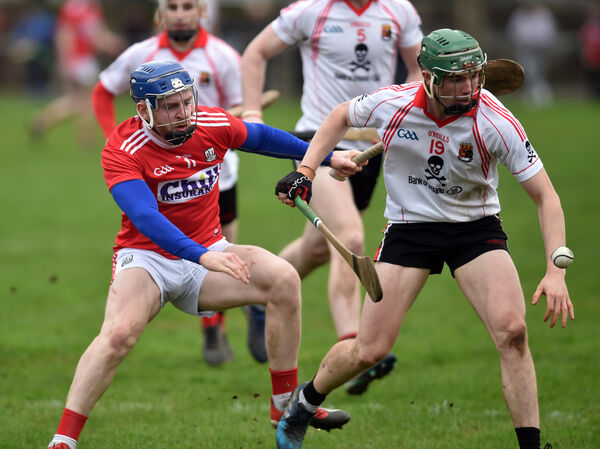 Cormac Murphy and UCC's Paddy Cadell tussle for the ball. Picture: Eddie O'Hare