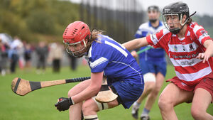 Inniscarra and Courceys backbone Rearden's Camogie All-Star selection