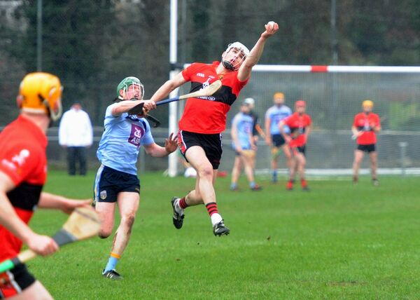 UCC's David Griffin winning the ball from UCD's Eoghan Callaghan. Picture: Denis Minihane.