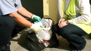 Cork city has just one litter warden