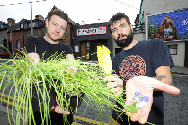 Sous chef, Mike McGrath (in black) and head chef Victor Barrado with some of their crops which was grown on the roof top urban garden of Miyazakai, Evergreen St. Pic: Gavin Browne