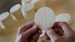 Is nothing sacred? Gurranabraher priest hits out at mass-goers discarding Communion host