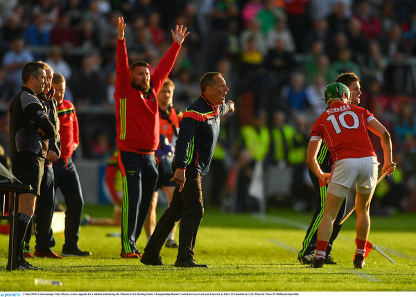 John Meyler appeals for a sideline ball. Picture: Piaras Ó Mídheach/Sportsfile