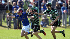 Cracking games in store in Féile hurling as Na Piarsaigh, Bride, Ballincollig and Barrs battle for the premier title
