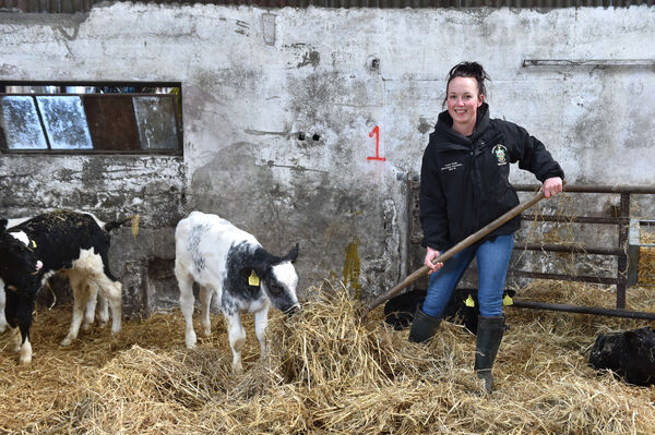 """If you didn't love dairy farming it would probably be the most miserable profession you could be in."" Picture Dan Linehan"