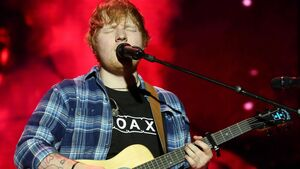 Residents' plea to Sheeran fans to show respect