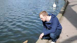 Tests carried out on carp at The Lough rule out herpes virus