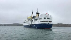 Cape Clear gets first port of call from cruise ship