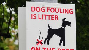 Councillor proposes 'poo patrol' to tackle dog fouling