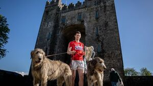 Harnedy gears up to lead Cork into a sizzling summer of hurling action