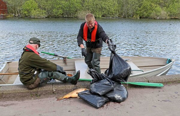 Dermot Long and Sean Cremin, of Inland Fisheries Ireland on The Lough with bags of dead fish. Picture: Jim Coughlan.