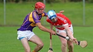 Cork GAA strategy aims to keep games relevant across all age groups