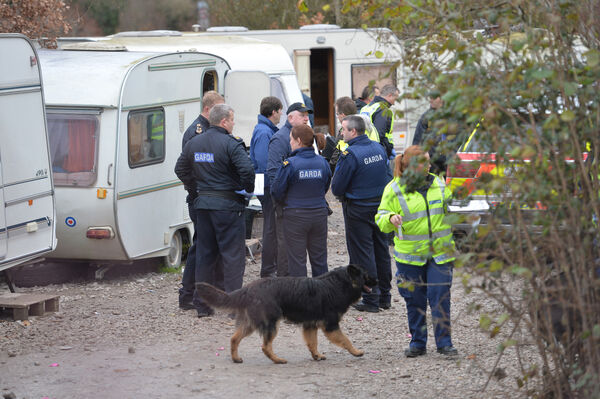 The Gardai and Customs raid on a traveller site near Little Island. Picture Dan Linehan