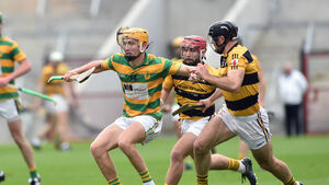 There's a youthful look to the sixth Rearden's Hurling All-Stars