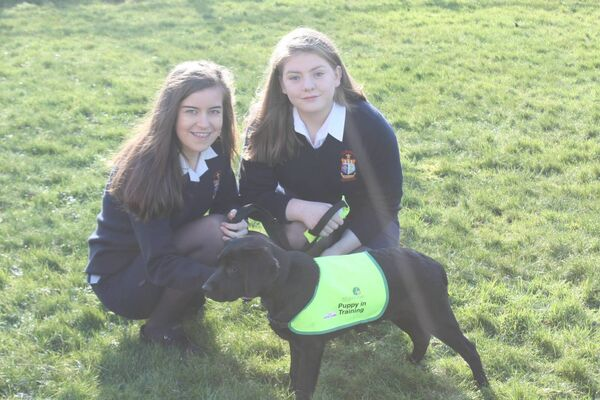 Hanna O'Donovan (right) and Anna O'Leary, of St Mary's Secondary School, Macroom, with Anna's puppy in training, Orchid