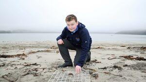 128 Cork projects vying for Young Scientist title