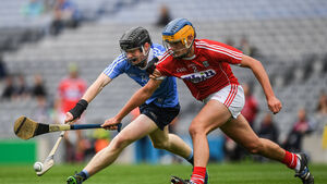 A busy year for the Rebels on the hurling front came at a cost