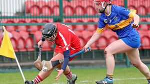 Rebels show their class at the end of lively camogie league clash