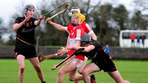 Cork schools well in contention for Harty Cup glory
