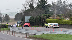Grief for young nurse killed in Cork crash