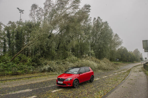 Hurricane winds on Carrigrohane road, Cork city during Storm Ophelia.Pic Daragh Mc Sweeney/Provision