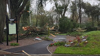 Extra funding required in the aftermath of Ophelia say councillors