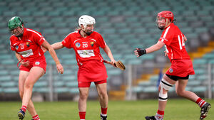 Cork captain Buckley: We'll have to improve to cope with the Cats at Croke Park